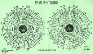 Iridologie chinoise